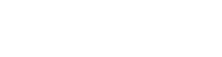 free network assessment